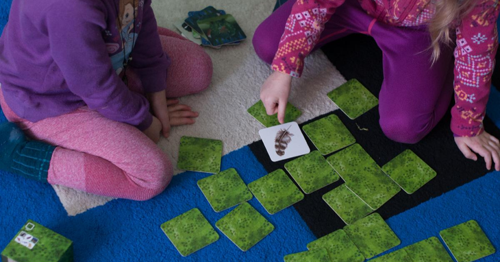 Many Types of Memory Games for All Ages