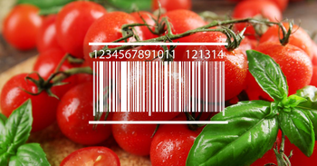 Best Calorie Counting Apps with Barcode Scanner for Food
