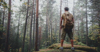 Must-Have Apps for Finding Your Way in Woods