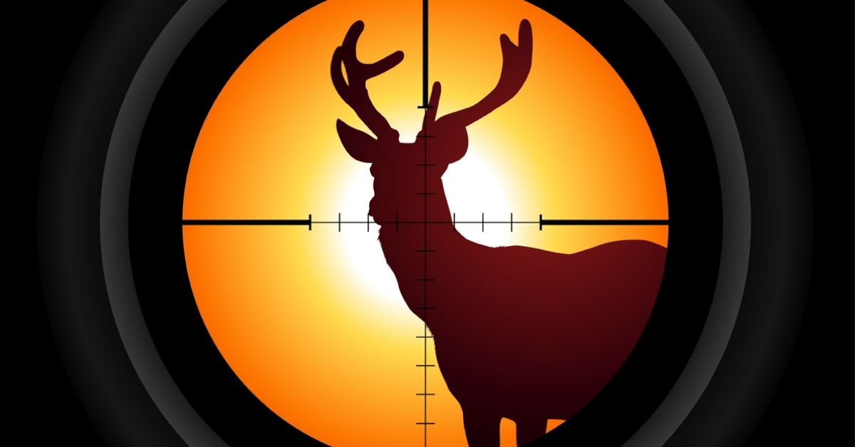 Best 10 Animal Hunting Games Last Updated July 19 2020